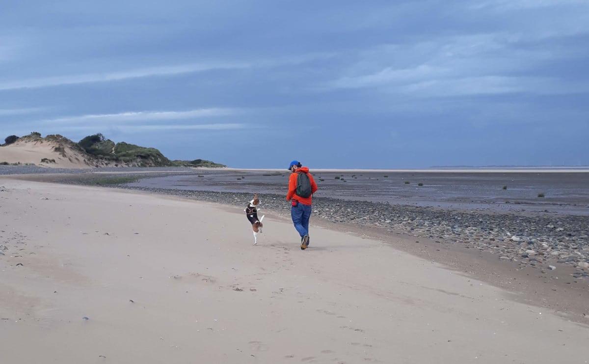 Good Doggy Guide, dog walk on the beach