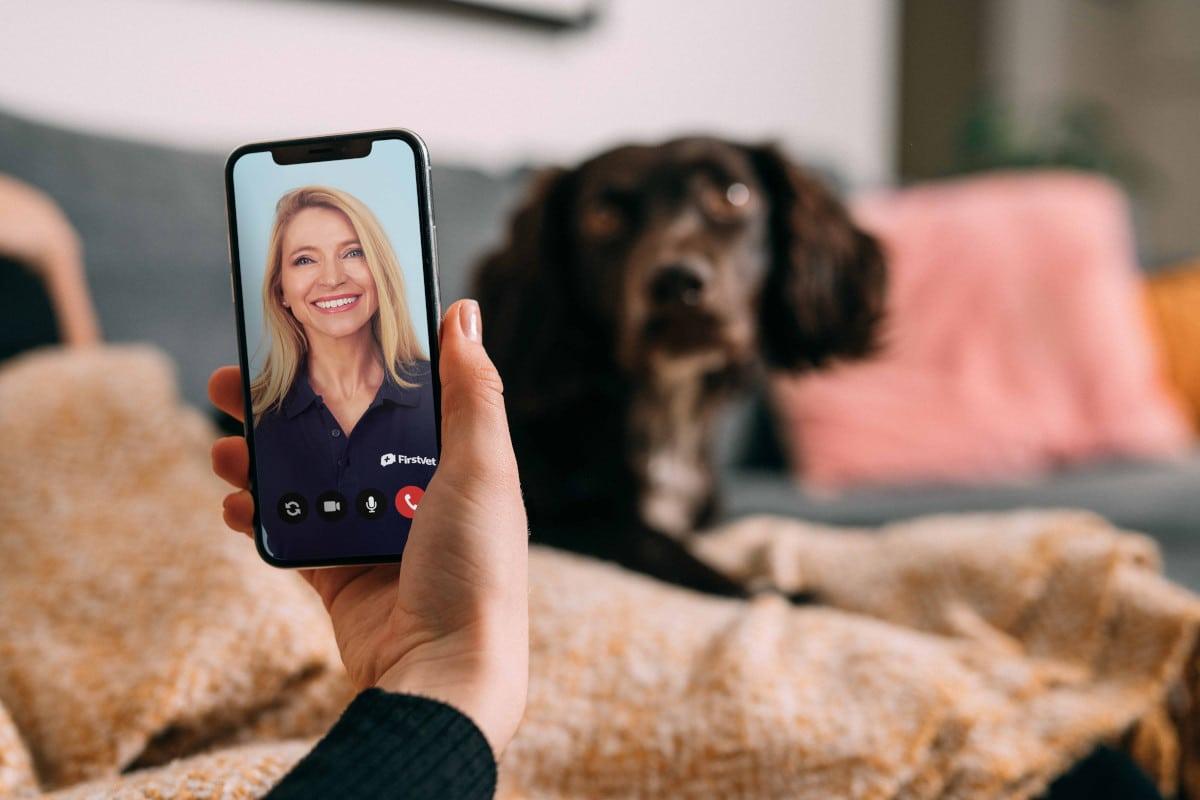 UK pet insurer petGuard has teamed up with Swedish virtual vet service FirstVet