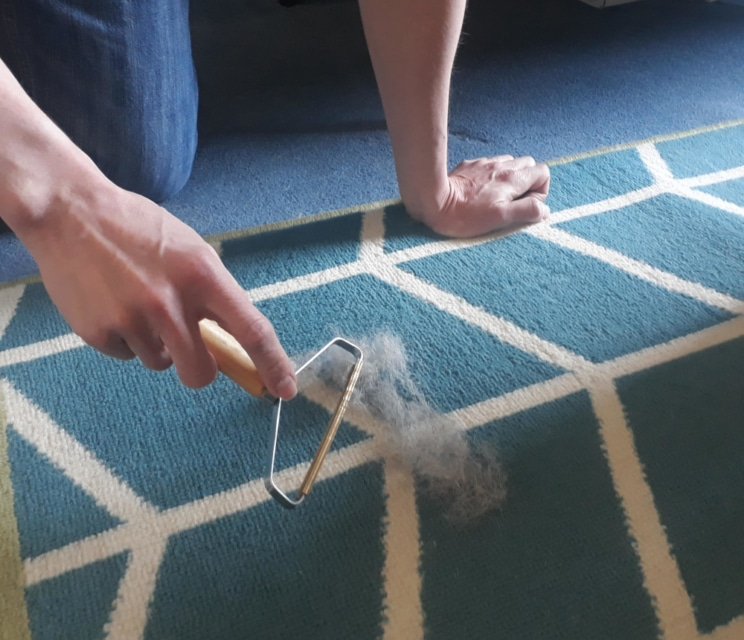 Review: Pet hair and lint remover