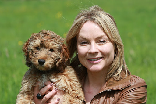 Would you pull a sickie to look after your pup?