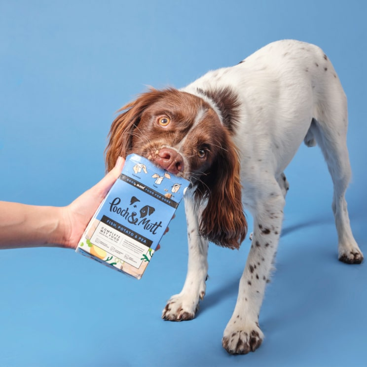 Pooch & Mutt launch food for dogs with sensitive digestion